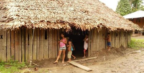 The role of ecosystem services on food security and nutrition in the Amazon | Food Security and Nutrition | Scoop.it