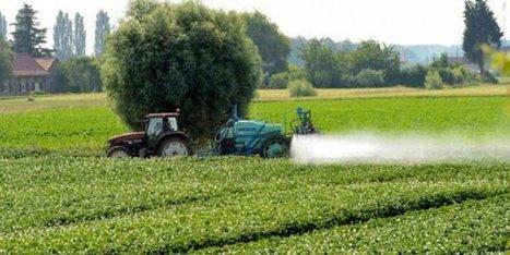 Pesticides dans les vignes : la cour d'appel demande une expertise médicale dans l'affaire Bibeyran – justice - France 3 Aquitaine | Le vin quotidien | Scoop.it