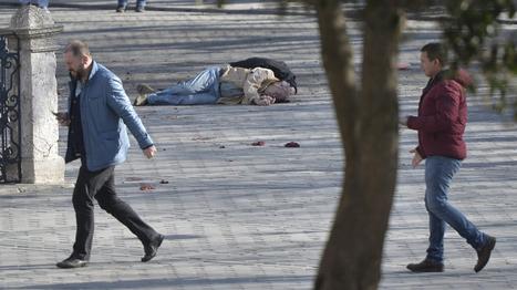 Diez turistas muertos en un atentado suicida del IS en el centro turístico de Estambul | NOTICIAS CIENCIAS SOCIALES NSD | Scoop.it
