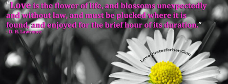 Love is the flower of life - Inspirational love quote for her and him | פרחים | Scoop.it