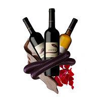 Pingas no Copo: Douro Boys no Dão!? | Wine Lovers | Scoop.it