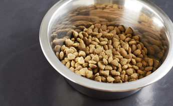 Portions of Pet Food Safety Study are the 'Epitome of Junk Science' | Food Safety News | Sterilization for dried products | Scoop.it