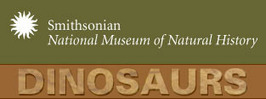 National Museum of Natural History - Dinosaurs | Dinosaurio | Scoop.it
