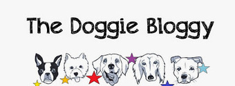 The Doggie Bloggy: 15 Things Your Dog Groomer Needs You To Know | All Things Dog | Scoop.it