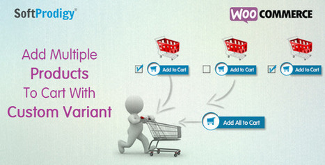 Add Multiple Products To Cart with Custom Variant | Web Designs And Development | Scoop.it