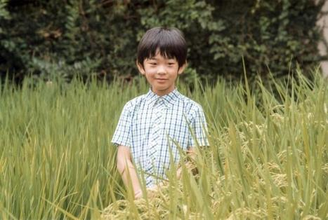 Japan's little prince could be last emperor on unreformed Chrysanthemum Throne | Geography & Current Events | Scoop.it
