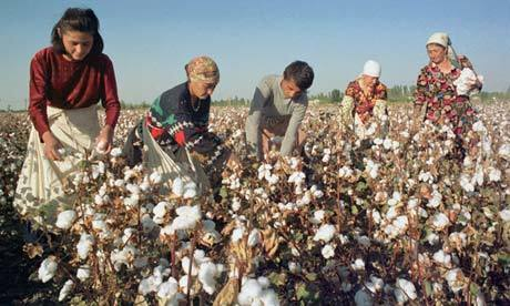 Pros and Cons of Cotton Production in Uzbekistan | Geography Education | Scoop.it