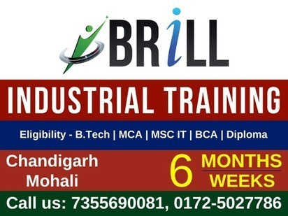 Why Six Month Industrial Training Is Essential Part Of Courses | Brill Infosystems | Scoop.it