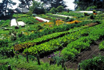 Quelles solutions pour changer de modèle agricole ? | Nouveaux paradigmes | Scoop.it