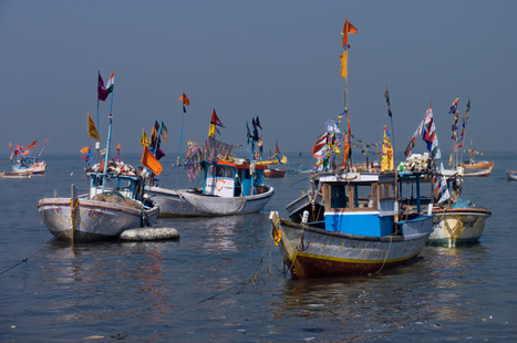 INDIA: Boat operators, fisheries experts to meet on Aug. 30   Hassan   Scoop.it