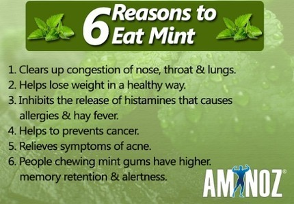 Healthy reasons to eat Mint | Aminoz Health and Sports Supplements | Scoop.it