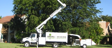 On Call Tree Service - A top tree service contractor in Chattanooga, TN   On Call Tree Service   Scoop.it