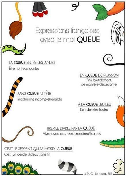 FLE Expressions et langage familier | Remue-méninges FLE | Scoop.it