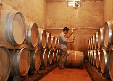Climate change may mean China could be top wine producer by 2050   Winemak-in   Scoop.it