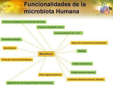La flora digestiva y su impacto en la salud. | Temas varios sobre Microbiología clínica | Scoop.it