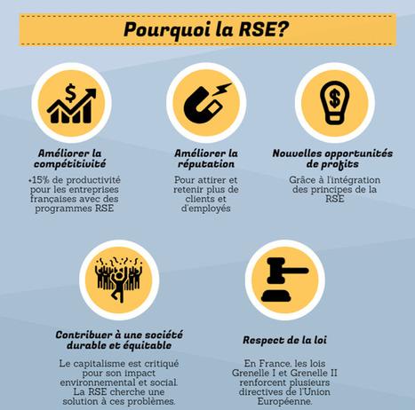 [Infographie] Où en est la RSE dans les entreprises ? | Le DD en Entreprise | Scoop.it