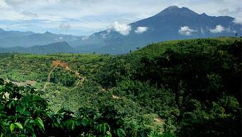 Cambio climático: Nuestros impactos | Rainforest Alliance | Agua | Scoop.it