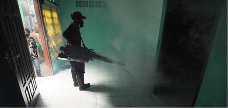 Retour sur Ebola | La revue du web de l'EHESP | Scoop.it