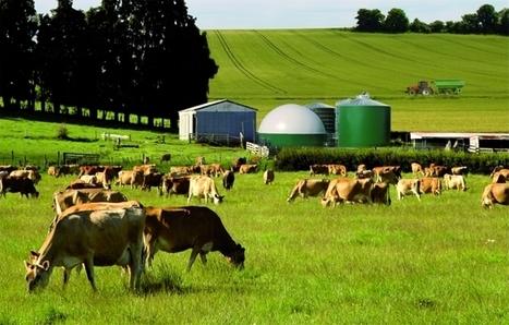 Étude Réduction des GES en agriculture - INRA | Carbone | Scoop.it