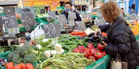 Les fruits et légumes d'hiver victimes des températures douces | Maraichage-Horticulture | Scoop.it