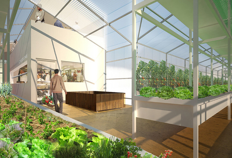 Laboratoire d'Urbanisme Agricole | Potagers urbains | Scoop.it