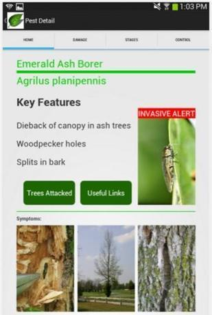 Tree Doctor app for Android users | Gardening | Scoop.it
