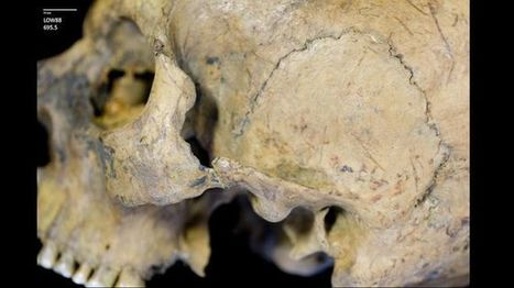Gladiator heads? Mystery of British skulls solved - Fox News | Ancient History | Scoop.it