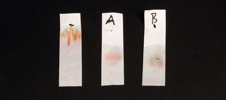 Museum of Science and Industry | Analyze Candy Using Chromatography | Química | Scoop.it