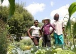 Innovation in local food   Enthusiasts for Change   Scoop.it
