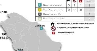 Avian Flu Diary: Saudi MOH: 2 New Primary MERS Cases (Al-Baha & Dammam) | MERS-CoV | Scoop.it