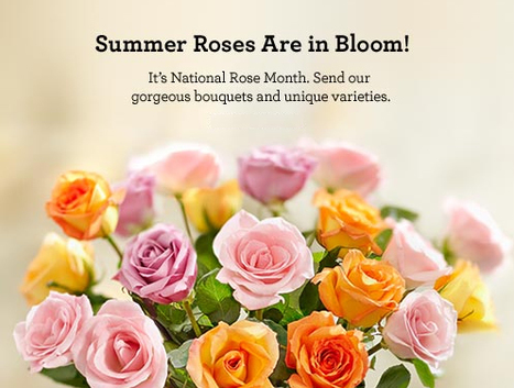 1800flowers coupon 30% off codes | Shopping and Coupons | Scoop.it