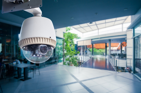 Researchers Uncover Giant IoT Camera Botnet | Business Video Directory | Scoop.it