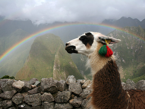 Machu Picchu Pictures -- National Geographic | Green Art Cafe | Scoop.it