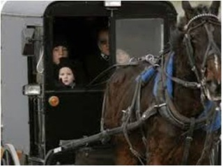 Amish Girl Forced into Experimental Chemotherapy Recovers with Natural Treatment | Cancer - Advances, Knowledge, Integrative & Holistic Treatments | Scoop.it