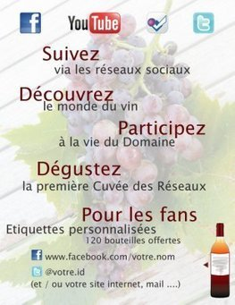 Vin, Internet et réseaux sociaux : les success stories du web | actualité-buduquebec | Scoop.it