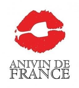 New Releases: Anivin de France Introduces Vin de France Wines to the U.S. Market | Autour du vin | Scoop.it