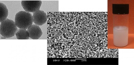 Porous Nanosized Particles: Preparation, Properties, and Applications | Mineralogy, Geochemistry, Mineral Surfaces & Nanogeoscience | Scoop.it