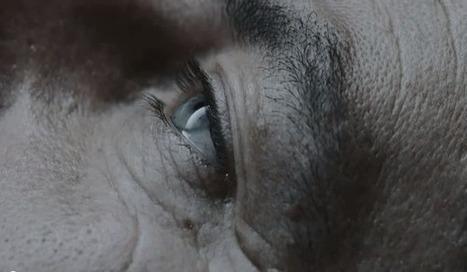 "Les Inrocks : ""Awake"", déjà une grande série | I love cinema | Scoop.it"