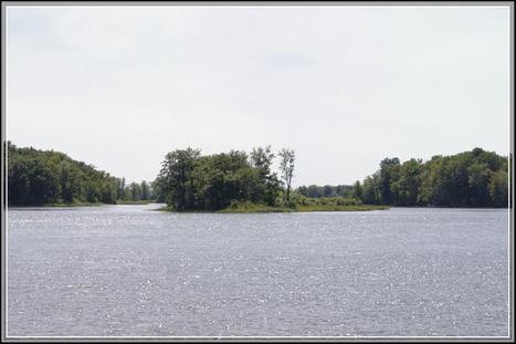 De l'eau et des arbres au Québec | The Blog's Revue by OlivierSC | Scoop.it