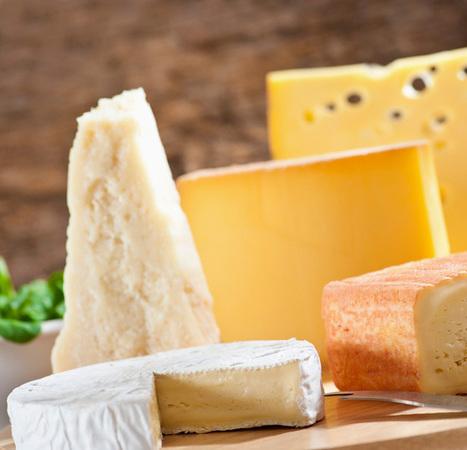 Les grandes familles des fromages français | La culture française -Ressources FLE | Scoop.it