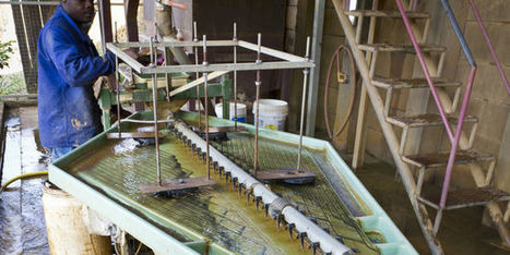 Une mine d'or attaquée en Guyane | La revue de presse CDT | Scoop.it