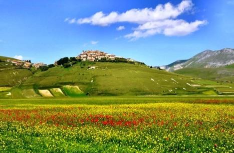 Dove andare in Primavera, al Parco nazionale dei Monti Sibillini | Le Marche un'altra Italia | Scoop.it