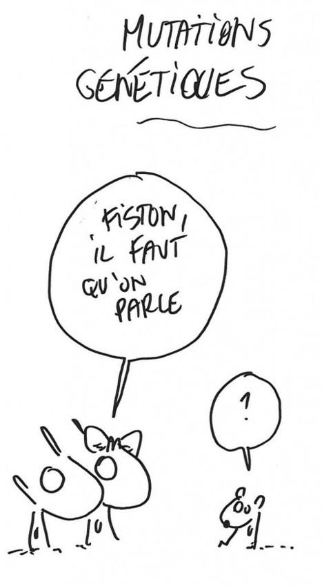 Podcast Science Sort Du Placard – Le Compte Rendu   C@fé des Sciences   Scoop.it