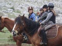 Magic Poney, Centre équestre Caussols : Randonnées à cheval, balades à poney, balade poney,balades chevaux | Provence | Scoop.it