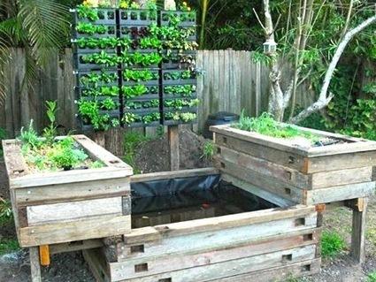 Vertical Garden meetsAquaponics | Growing Food | Scoop.it
