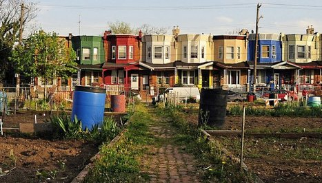 Vacant Lots Turned Green Reduce Crime, Study Says - Earth911.com | Arrival Cities | Scoop.it