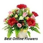 online flowers | adedejitaxi | Scoop.it