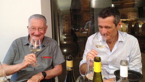 Yes: Verdicchio is Ready for the Wine Renaissance | Wines and People | Scoop.it