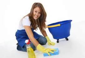 Professional House Cleaning Services Benefit Just About Anyon   mabel7ojm   Scoop.it