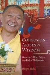 Confusion Arises as Wisdom | promienie | Scoop.it